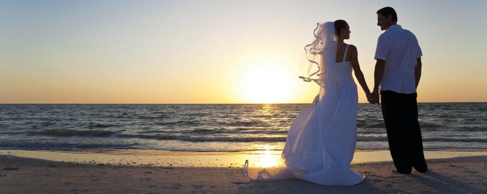 Поиск свадебного фотографа